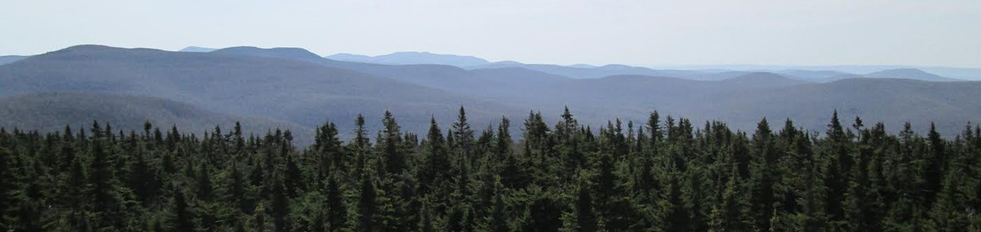 Catskill Forest Association